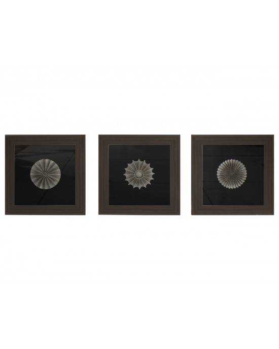 My8080-0020/A/B/C Framed Object Art Set Of 3
