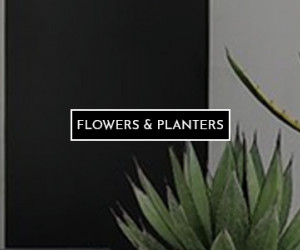 Flowers & Planters