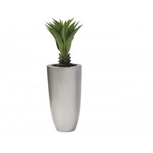 Agarve 85cm PLNT 1356 In VP575 Ornamental Pot Large