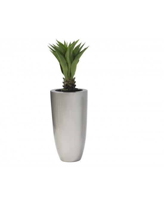 Agarve 85cm PLNT 1356 In VP575 Ornamental Pot Large